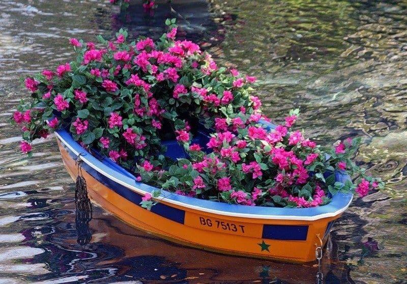Плавающие клумбы: 4 способа сделать цветочные мини-острова в вашем пруду